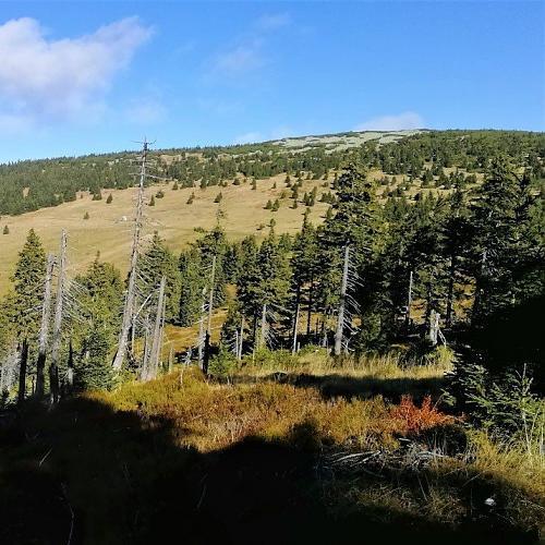 Zadní Planina