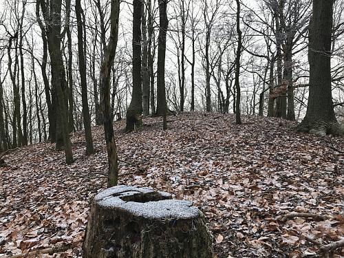 Dvorský kopec