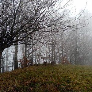 Kozlovická hora Z vrchol