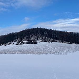Myštický vrch