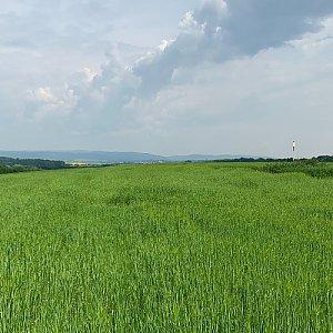 Hluzovský kopec