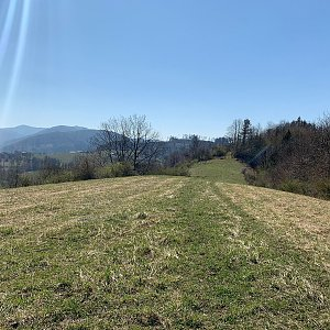 Vavřkova hora