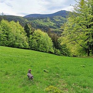 Lysá hora (15) z Ostravice
