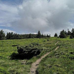 Oravska Polhora Hiking