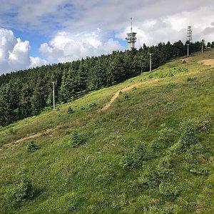 Via Czechia Krušky D3