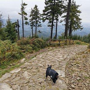 Slet Lysařů - Lysá hora (24) z Ostravice