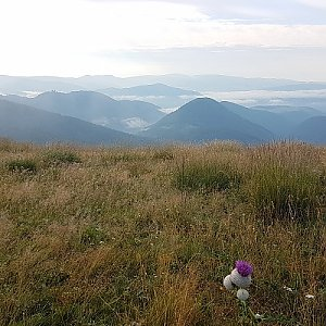 Trek přes Nízké Tatry - den 4 - Hiadelské sedlo - Donovaly