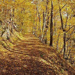 Turistika - kolem Moravice
