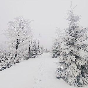 Hlubokym snehem na Kladnatou a Martinak s pobihanim po vrcholcich kolem