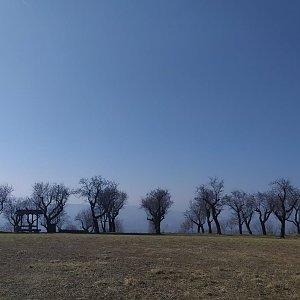 Mandloňovpu stezkou přes Starý vrch a Kamenný vrch - Hustopeče