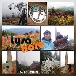 Muška Oro na vrcholu Lysá hora (6.10.2019 6:25)