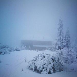 Petra Kosarkova na vrcholu Lysá hora (6.2.2020 16:48)
