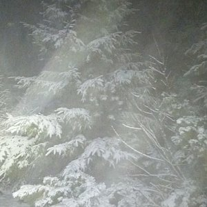 Gabriela Schellnerová na vrcholu Lysá hora (20.1.2018 18:12)