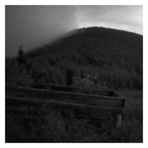 Dobros na vrcholu Lysá hora (12.7.2020 10:39)