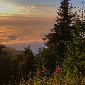Ivča na vrcholu Lysá hora (1.8.2020 19:42)