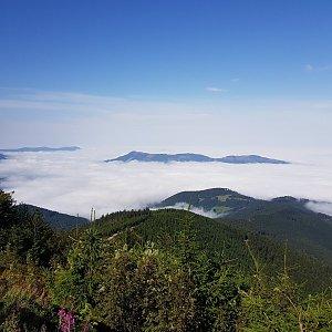 Folle na vrcholu Lysá hora (30.8.2020 10:18)