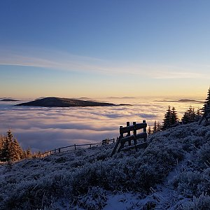 Dobros na vrcholu Lysá hora (13.12.2020 8:08)