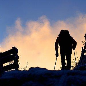 Dobros na vrcholu Lysá hora (20.12.2020 8:11)