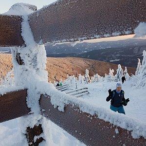 Dobros na vrcholu Lysá hora (10.1.2021 8:03)