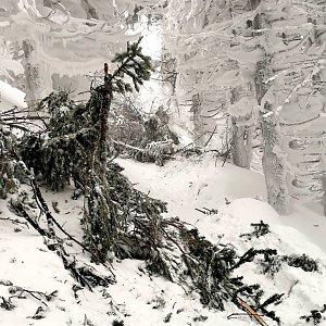 Jiří Nesit na vrcholu Lysá hora (13.1.2019 7:02)