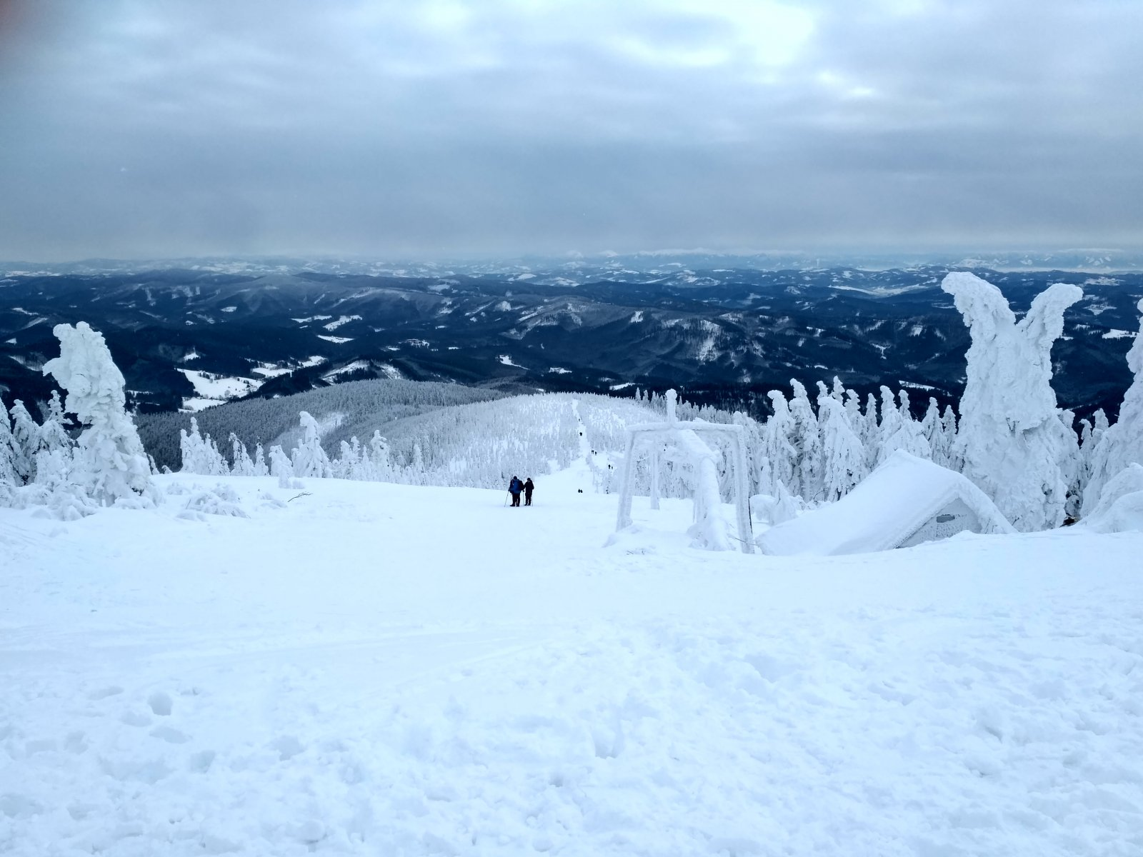 Alda na vrcholu Lysá hora (20.1.2019 11:08)