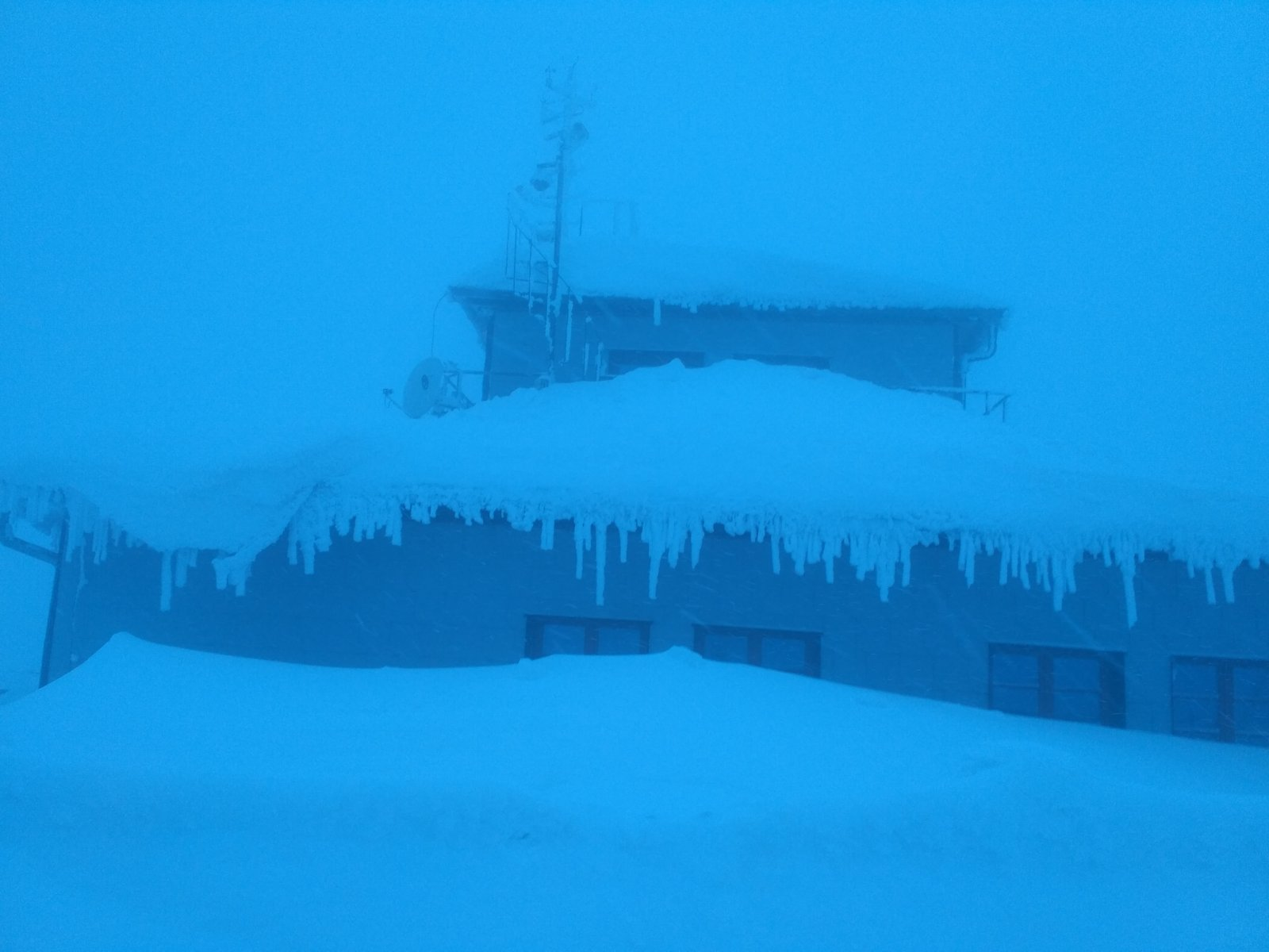Alda na vrcholu Lysá hora (26.1.2019 15:39)