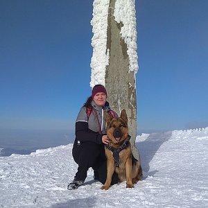 Gabča na vrcholu Lysá hora (30.1.2019 11:47)