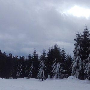 Paula Siudová na vrcholu Lysá hora (2.2.2019 10:53)