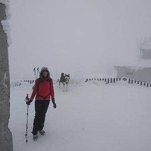 Jana Mayerová na vrcholu Lysá hora (26.1.2019 10:44)