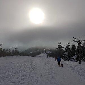 Folle na vrcholu Lysá hora (21.2.2021 8:05)