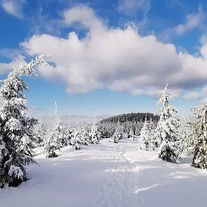 Jiří Nesit na vrcholu Lysá hora (22.2.2019 14:00)