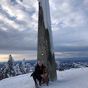 Ivča na vrcholu Lysá hora (20.1.2021 15:15)