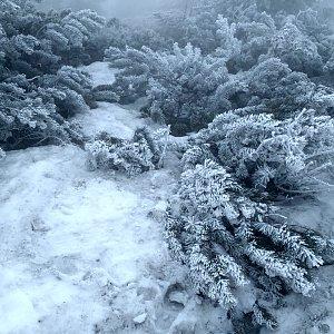 Alda na vrcholu Lysá hora (11.4.2019 10:04)