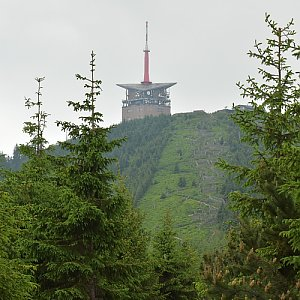 kaltz na vrcholu Lysá hora (17.6.2019 9:45)