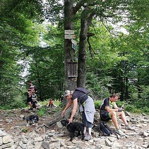 Blanka Holleschová na vrcholu Tanečnice (10.8.2019 11:22)