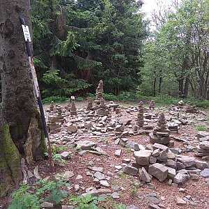 Merkys na vrcholu Tanečnice (27.6.2020 11:43)