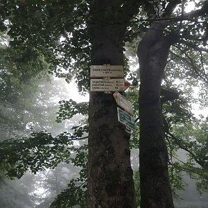 Jiří Tomaštík na vrcholu Tanečnice (17.7.2021 4:59)