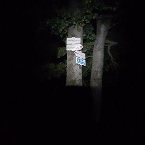Dřevák na vrcholu Tanečnice (17.7.2021 23:55)