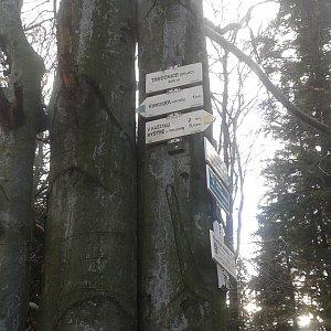 ŠenovKK na vrcholu Tanečnice (Malenovice) (11.11.2018 14:28)