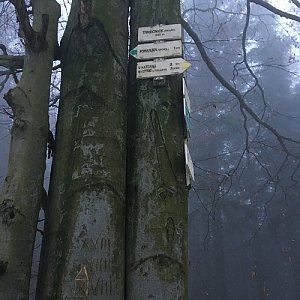Jarek na vrcholu Tanečnice (Malenovice) (13.12.2020 7:37)