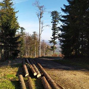 Gregořicovi na vrcholu Tanečnice (Malenovice) (9.5.2021 8:00)