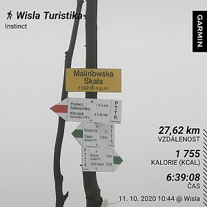 Medvěd Codiak na vrcholu Malinowska Skala (11.10.2020 14:55)