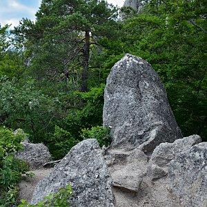 Jiřka Niedobová na vrcholu Súĺov (28.6.2020 15:00)