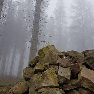 Folle na vrcholu Prašivá (2.4.2021 12:15)