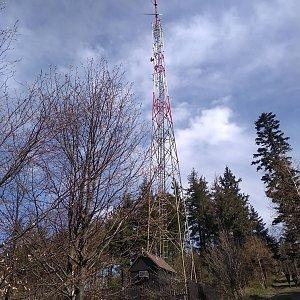 Verysek na vrcholu Prašivá (22.4.2019 14:45)