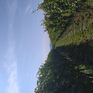 Gregořicovi na vrcholu Vinohrady (11.9.2021 14:01)