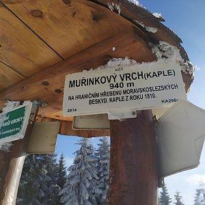 Laina666 na vrcholu Muřinkový vrch (21.1.2020 13:59)