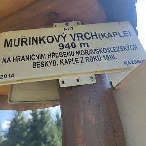 daja.cz na vrcholu Muřinkový vrch (8.9.2021 13:34)