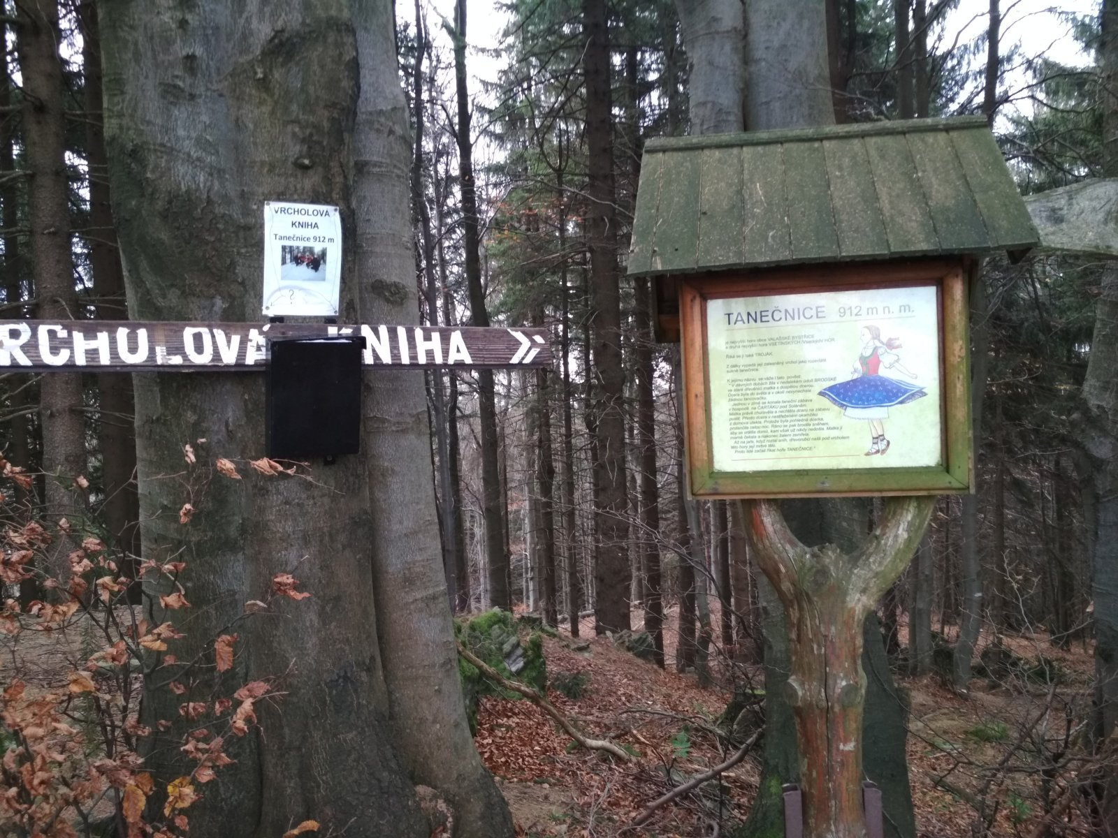 Katka na vrcholu Tanečnice - sedlo (2.11.2018 12:12)