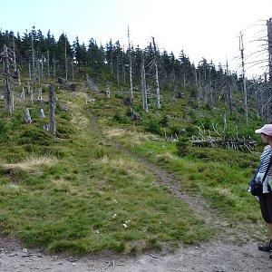 Michal na vrcholu Stříbrnická (18.8.2012 13:30)